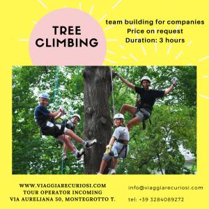 Tree climbing EN (1)